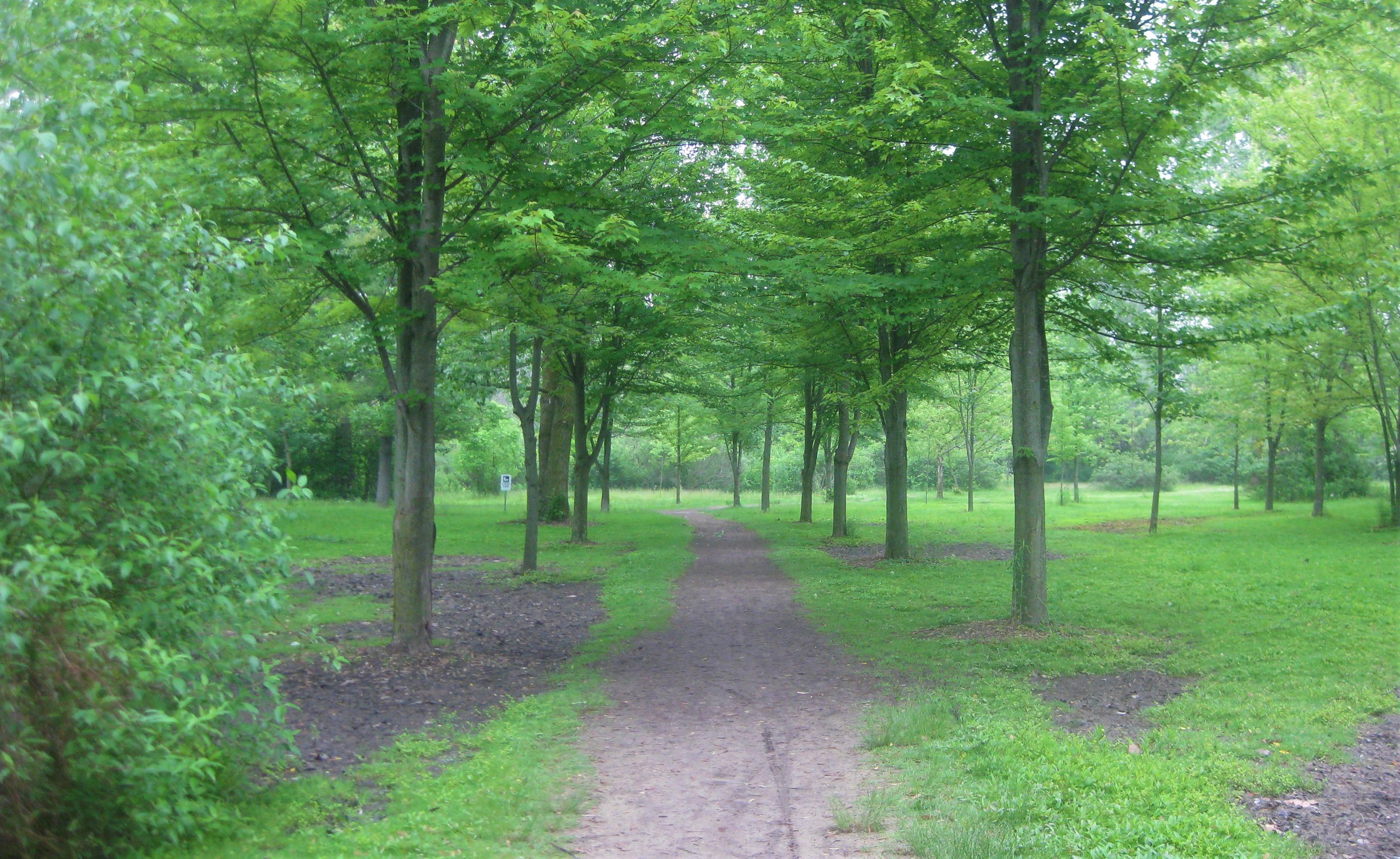 strathroy conservation area